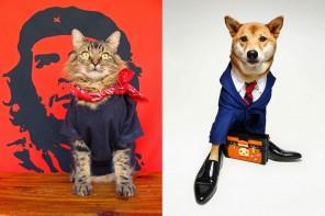 時尚界的新寵兒,看寵物們如何來玩轉時尚