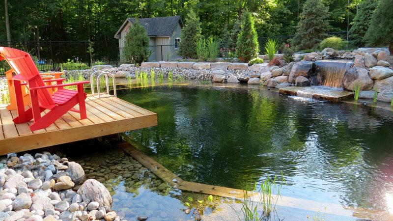 Natural Swimming Pools 2