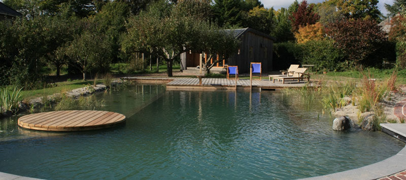 Natural Swimming Pools 3
