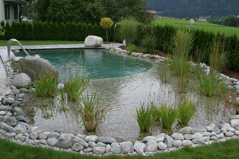 Natural Swimming Pools 4